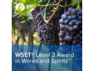 WSET® Level 2 – Award in Wines and Spirits