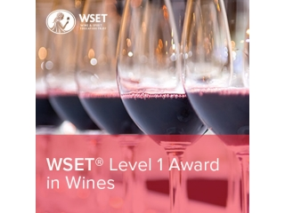 WSET® Level 1 – Award in Wines
