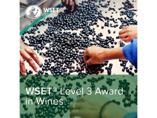 WSET® Level 1 – Award in Wine Service
